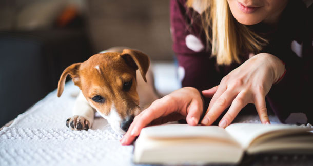 Book Recommendations for Pet Lovers