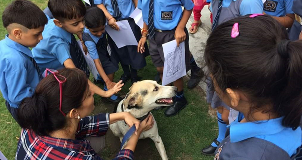 STRAW'S COMPASSIONATE CLASSROOMS: Teaching Children Kindness & Empathy Towards All Creatures Great and Small